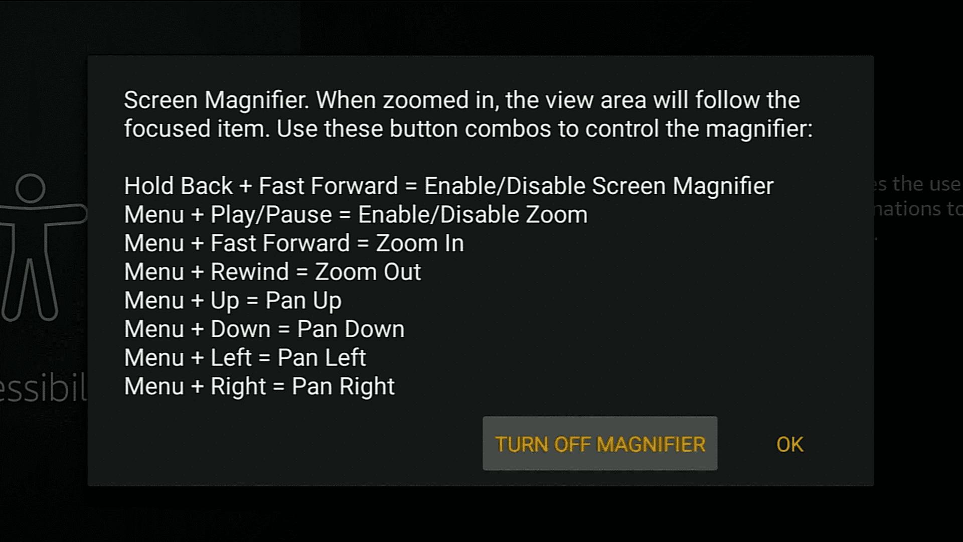 Turn On Screen magnifier on firestick